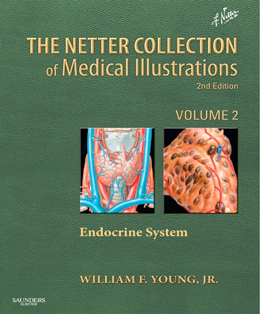 Netter Collection of Medical Illustrations: Endocrine System