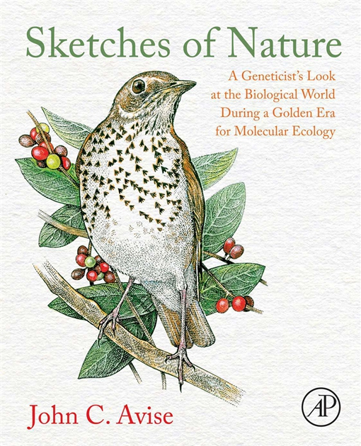 Sketches of Nature