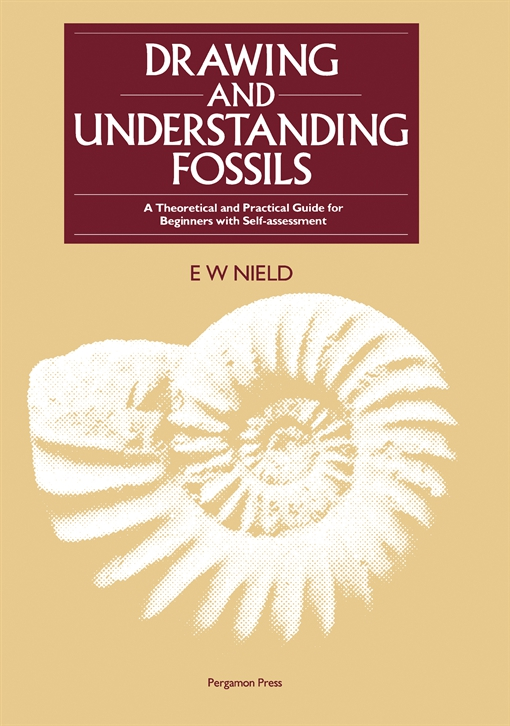 Drawing & Understanding Fossils