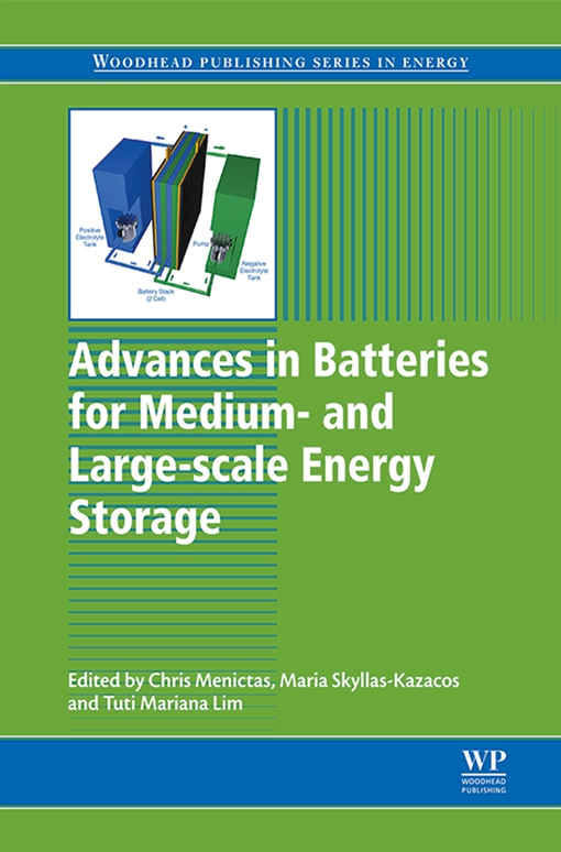 Advances in Batteries for Medium and Large-Scale Energy Storage