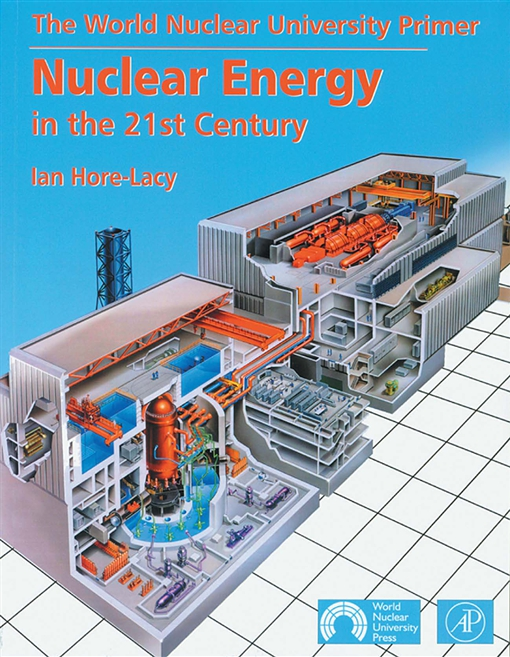 Nuclear Energy in the 21st Century