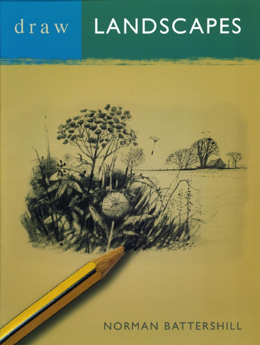 Draw Landscapes