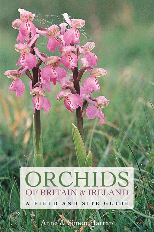 Orchids of Britain and Ireland
