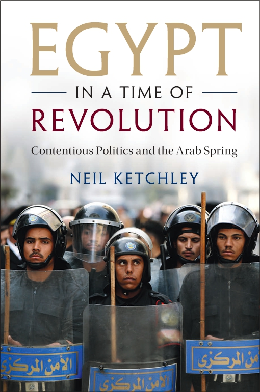 Egypt in a Time of Revolution