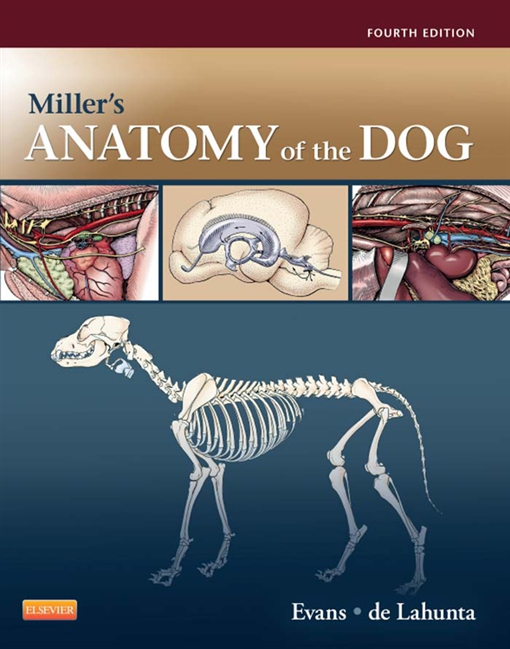 Miller's Anatomy of the Dog - E-Book