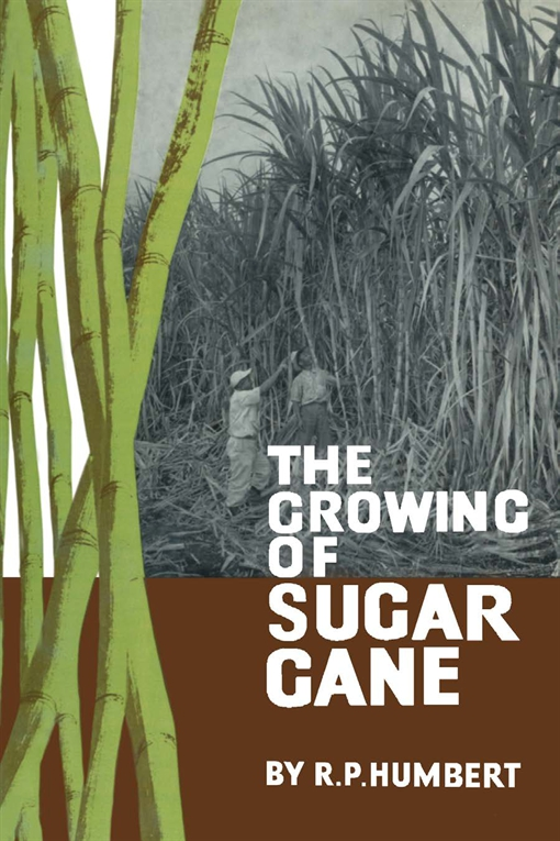 The Growing of Sugar Cane