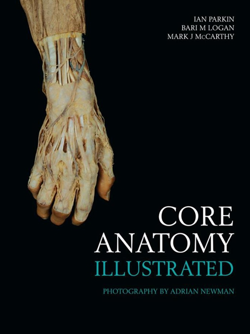 Core Anatomy - Illustrated