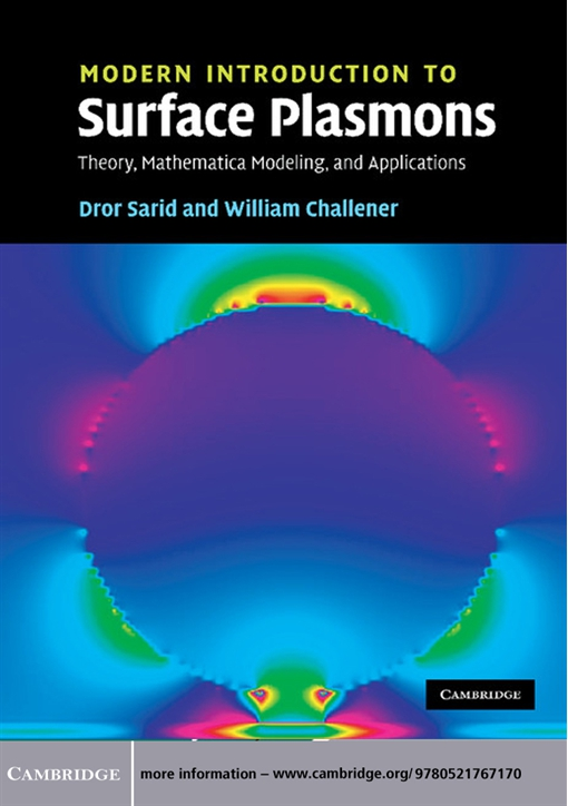 Modern Introduction to Surface Plasmons